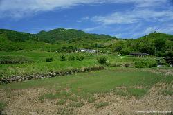 늦여름에 올리는 철쭉 - 합천 황매산