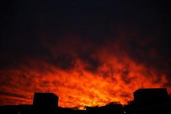하늘이 하늘이 불타고 있다.