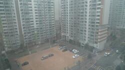 펑펑 눈이 내린다.
