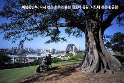 여행 종반부, 다시 찾은 호주의 흔한 뒷동네 공원, 시드니 천문대 공원