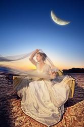 Moonlight dream...