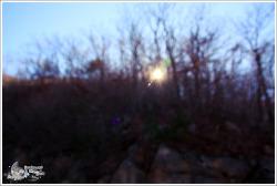 2011년 11월 그림나무 출사
