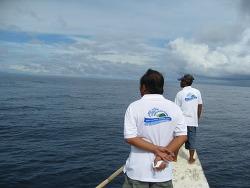 필리핀 세부 및 보홀섬(2010.6.25~30)