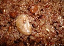 다이어트와 당뇨 한꺼번에 잡는 영양 발아 현미밥