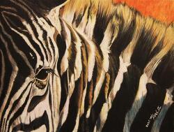 |해석| Beach House - Zebra