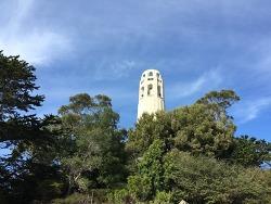 샌프란이 한눈에 COIT TOWER