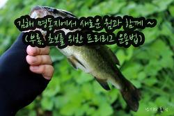 김해 명동지에서 새로운 웜과 함께 ~ ^^  (부록. 초보를 위한 프리리그 운용법)