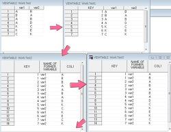 [SAS] 2개의 변수 조합 빈도구하기(앞뒤 변수 변경을 동일건으로 판단할 경우, 경우의 수)
