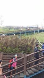 상암월드컵공원, 하늘공원과 노을공원, 난지천공원, 평화의 공원을 가다