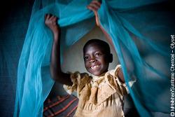 [TED] 소니아 샤(Sonia Shah): 아직도 말라리아를 없애지 못한 3가지 이유.