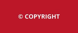 사진과 글의 저작권