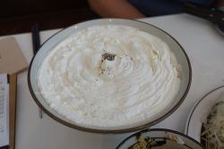 [분당 맛집] 분당에도 생겼다, 크림카레우동으로 유명한 서현역 <토끼정>