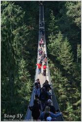 밴쿠버, 카필라노 공원 (Capilano Park)