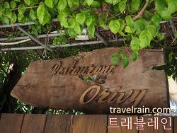[호이안 맛집] 로컬 맛집, 오리비 레스토랑