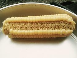 옥수수를 먹는다