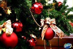 성탄절 유래 및 크리스마스 이야기