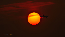 태양의 철새 Solar & airplane