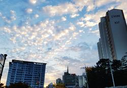어느 가을 아침 하늘