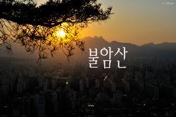 불암산_일몰/ 매직아워 / 학도암 / 백사마을 / 노원구 / 소나무 / 진달래 / 까마귀