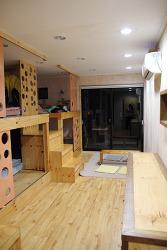 [제주도/게스트하우스] 개인공간이 확보되는 6인실 도미토리룸이 있어서 좋았다, 물고기나무