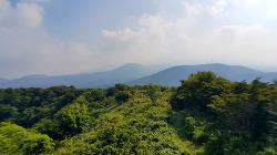 치유의 생태공원, 절물자연휴양림 '절물오름'