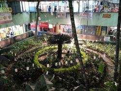인도 콜카타의 재래시장 BJ Market