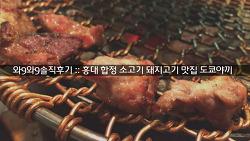 [와9와9 솔직후기] 홍대 합정 소고기 돼지고기 맛집 도쿄야끼