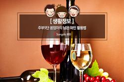 [생활정보] 주부9단 쏭엄마의 남은 와인활용법