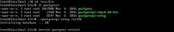 CentOS Minimal Intallation으로부터 서버 구축 방법 #4 (Postgre SQL 설치 및 Perl 연동)