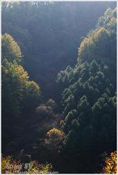 칼봉산 자연휴양림