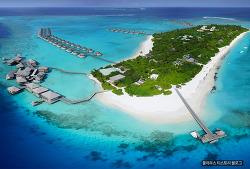 인도양의 바람을타고 보석 같은 섬 몰디브에서 즐기는 여행