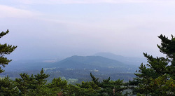 제주도민의 힐링장소, 한라수목원 '광이오름'