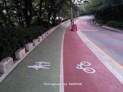 급조된 자전거 도로???