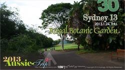 [D+14] Sydney 13 - Royal Botanic Gardens 로얄 보타닉 가든, 호주 시드니