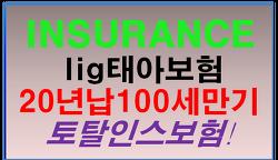 lig태아보험 20년납 100세만기