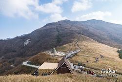 울산 가볼만한 곳, 영남알프스 간월재