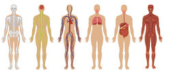 젊을 때, 100년 쓸 몸을 만들어라. - 100년 쓸 완벽한 몸 만들기 프로젝트