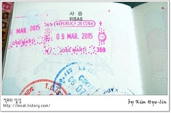 [적묘의 여행tip]해외필수품 여권과 출입국 도장. 미국 입국 도장, WT