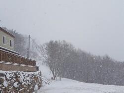 11월 눈내린 센터