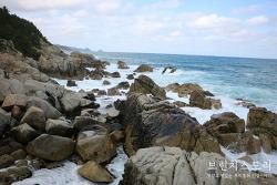 당일치기 경북여행 가볼만한곳 영덕 해맞이공원, 주왕산 주산지