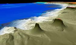 엠파이어 스테이트 빌딩보다 높은 호주 그레이트 배리어 리프 VIDEO: Massive underwater coral 'skyscraper' discovered in the Great Barrier Reef stands taller than the Empire State Building at 1,640 feet
