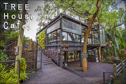 방콕의 마지막 남은 정글 방크라차오의 트리하우스 카페 / Tree House cafe, Bang Kachao, Bangkok, Thailand
