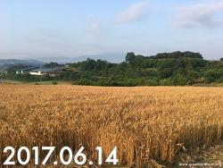 2017~2018 돌봄농장 만들기