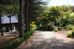 [경기도 파주] 아침고요수목원 후기
