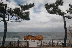 [국내기행] 정동진 그리고 피노키오 박물관과 공원