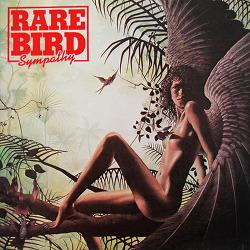[185] Sympathy - 레어 버드(Rare Bird)