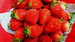 농약없이 딸기 씻는법, 2배로 달콤하게 먹을수 있는 꿀팁!