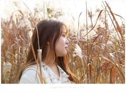 부산 억새명소 삼락공원 억새밭에서 - 서연