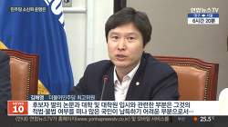 민주당은 민주적 토론이 가능한 정당인가? - 김해영 의원의 경우