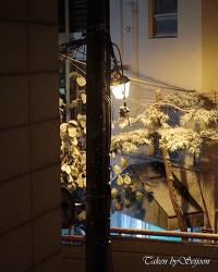 눈 내리는 밤, 서울